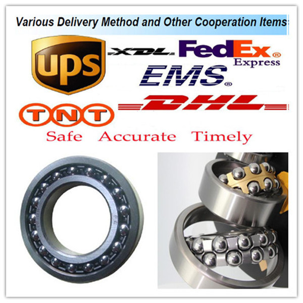 2320 ISO Self-Aligning Ball Bearings 10 Solutions
