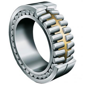 NF 206 NACHI Cylindrical Roller Bearing Original