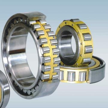 NF 205 NSK Cylindrical Roller Bearing Original