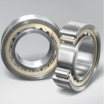 NF205 FBJ Cylindrical Roller Bearing Original