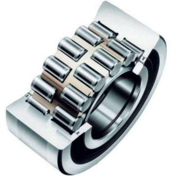 NF207 E CX Cylindrical Roller Bearing Original